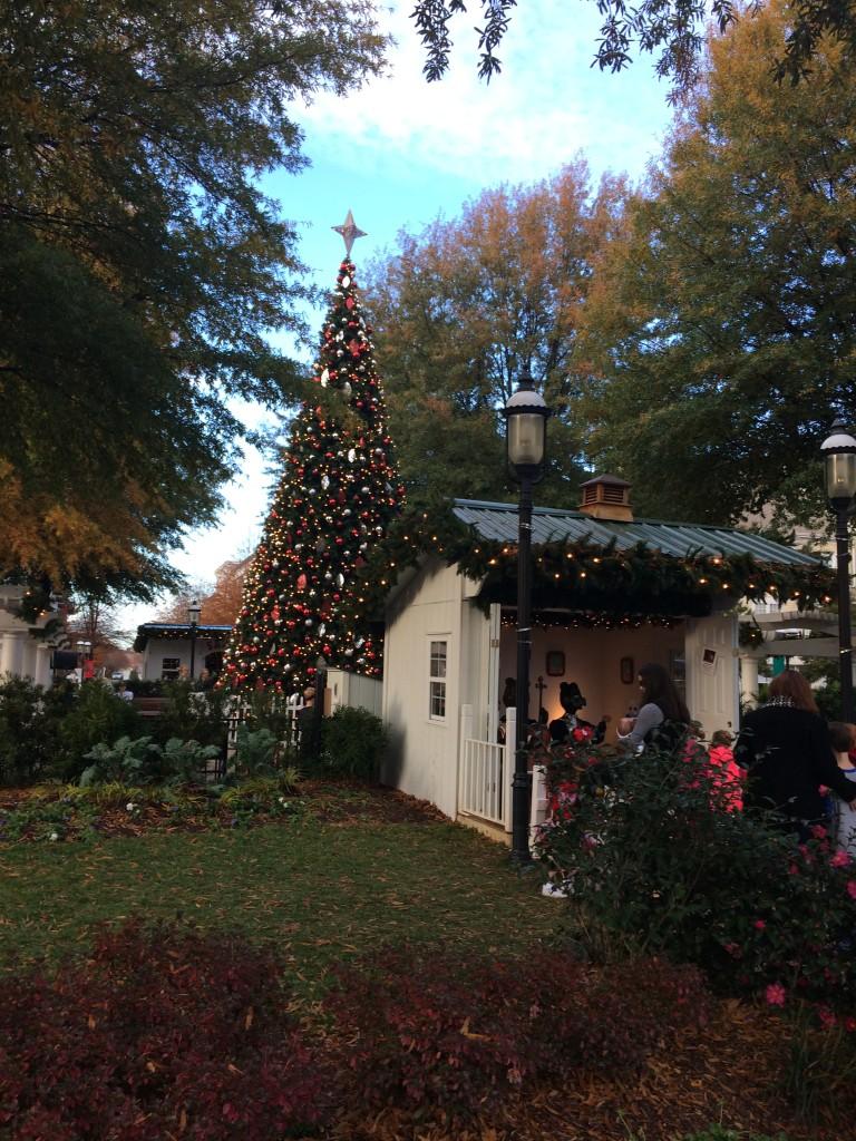 Walking Around The Christmas Tree
